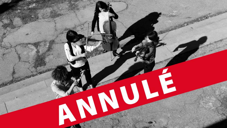 Quatuor en Cévennes / Eté 2020 / Annulé